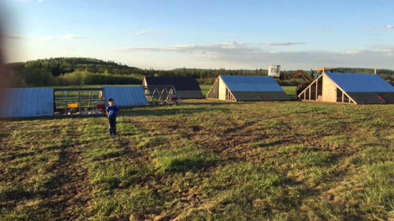 HWF huts 768x432