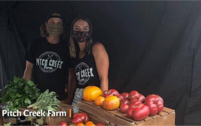 Producer Spotlight: Pitch Creek Farm
