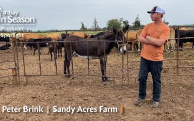 Producer Spotlight: Sandy Acres Farm